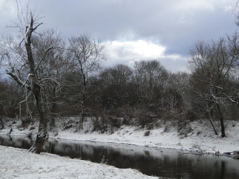 Бр Зима 2015 150